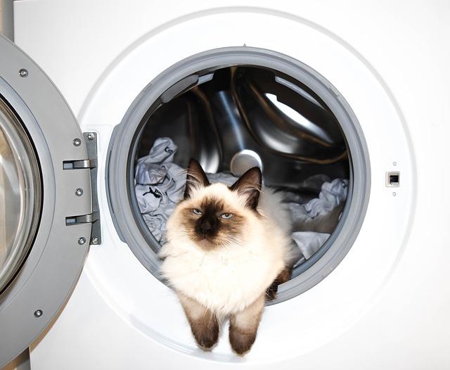 Automatická pračka s kocourem